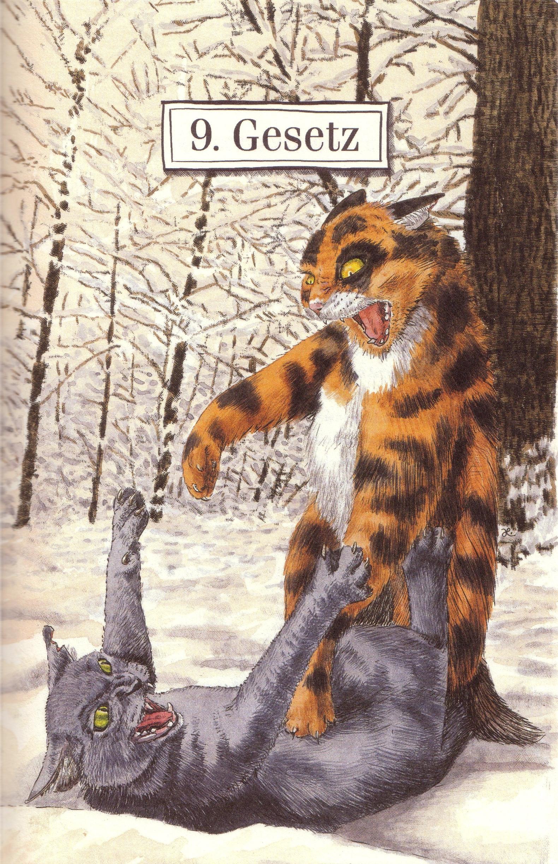 Warrior Cat Reihe  Band