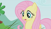 Fluttershy looks surprised S1E07