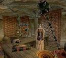 Elder Scrolls Wiki 2011