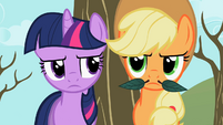 Twilight staring Applejack's stache S2E10