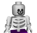 Hybrid Skeleton