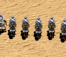 Caballería de Age of Empires II