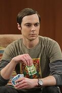The Recombination Hypothesis Sheldon