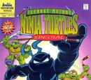 Teenage Mutant Ninja Turtles Adventures Special issue 11