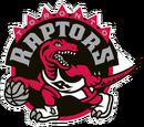 Toronto Raptors (2013)