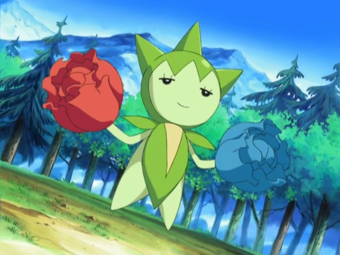 Derw'in pokemonu