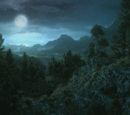 Dark Forest (Location)