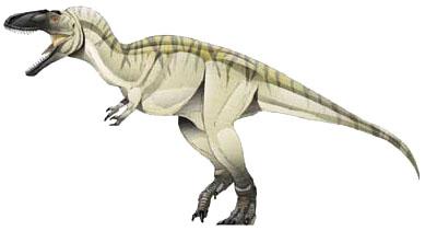Tarbosaurus-1