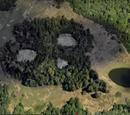 El Bosque Del Mal