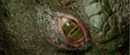 The Lizard's eye.png