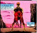 Kid Flash Wally West 008.jpg