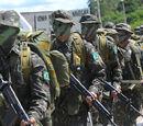Nine Day Colombian War