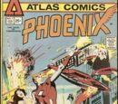 Phoenix/Covers