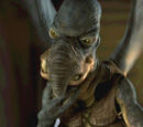 Watto/Legendy