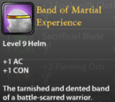 Band of Martial Experience