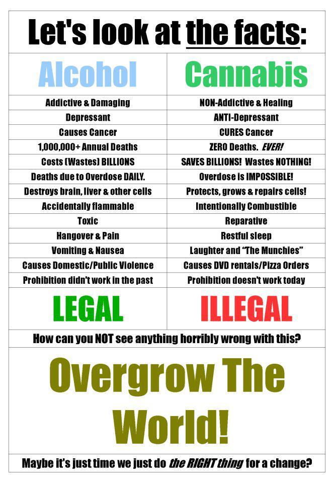 The Great Debate: Alcohol vs Marijuana
