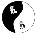 Ask Yin and Yang