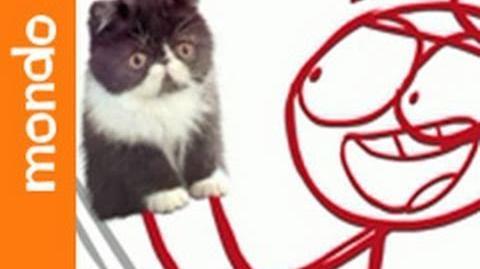 Kitty Amazing (Episode)