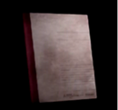 Yoshino Takigawa's diary.png