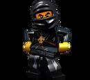 Ninja of Earth
