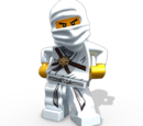 Ninja of Ice