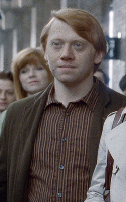 Ron Weasley adulto