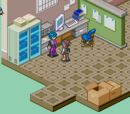 Mega Man Battle Network 6 screenshots