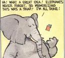 Elephant (Transmogrifier alter ego)