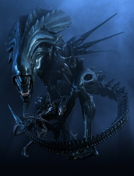 xenomorph drone with Queen  Caste on Transparent   Alien Xenomorph By Selficide Stock further Predalien Warrior together with Bell UH 1 Iroquois  22Huey 22 as well Chestburster together with Queen  caste.