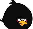 Big Ninja Brother Bird