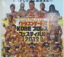 Kobe World Hall Pro Wrestling Festival