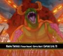 Magma Tortoise