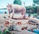 DW: Eocene Period