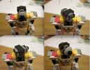 Assistant-head1.png