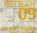 Test Shaft 09