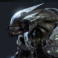 Species - Halo Nation — The Halo encyclopedia - Halo 1 ...