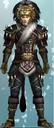 DW6E-DLC-Set02-03-Lion Armor.PNG