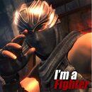 DOA5 Promo Ryu.jpeg