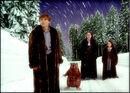 Winterland - Narnia.jpg