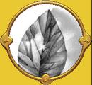 Première locus magicalicus de Connwaer.png