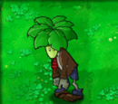 Umbrella Leaf Zombie