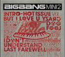 Last Farewell - BIGBANG