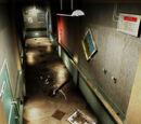 Raccoon General Hospital/4F passage