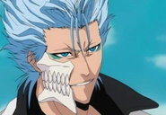 http://img2.wikia.nocookie.net/__cb20120709164657/bleach/fr/images/8/8f/Grimmjow.png