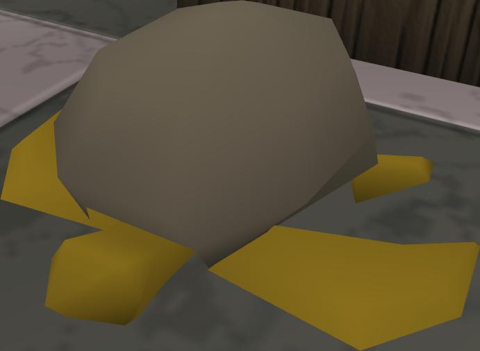 Sea_turtle_detail.png