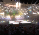 Dead or Alive 5 stages