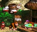 Funky Kong/Galería