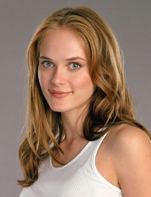 Rachel Blanchard couple