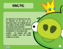 King Pig Toy Care.PNG