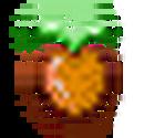 Fruit orange.png